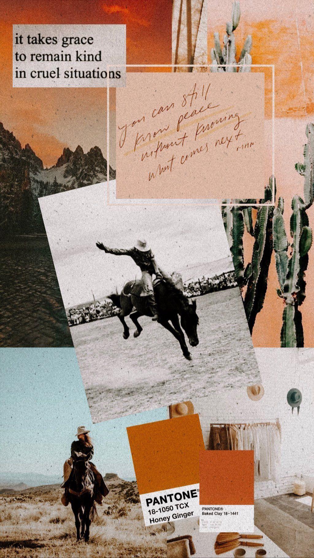 Instagram Western photography Cowboy photography Western artwork 1024x1820