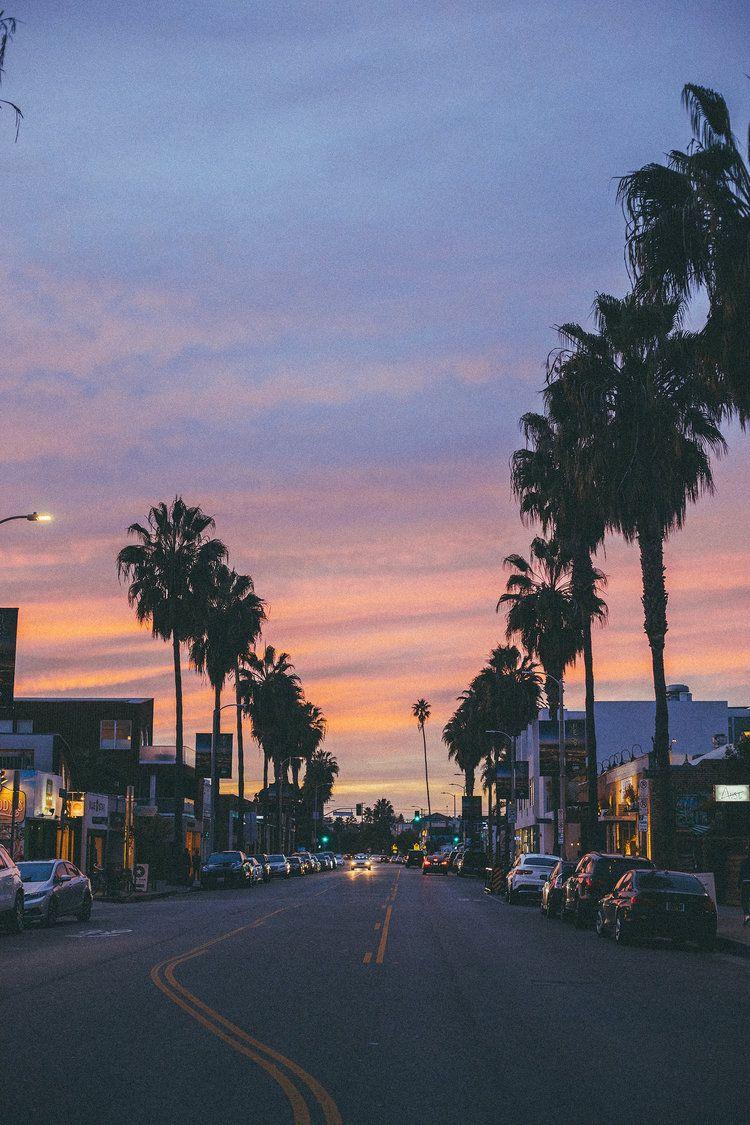 venice beach california sunset palm trees photography 750x1125