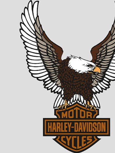 of harley davidson wallpaper border on sale Great selaction of Harley 375x500