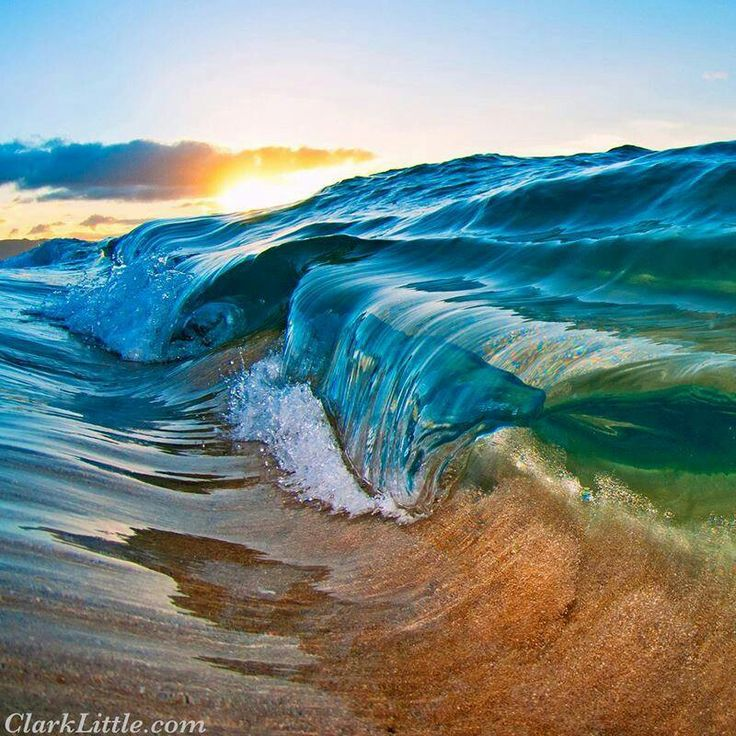 Clark Little Photography Oceanic Pinterest 736x736