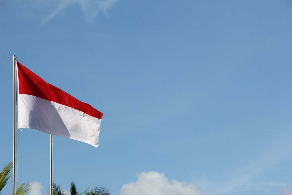 free download indonesia flag pictures download images on unsplash 1000x667 for your desktop mobile tablet explore 35 indonesia flag wallpapers indonesia flag wallpapers wallpaper peta indonesia flag background wallpaper indonesia flag wallpapers