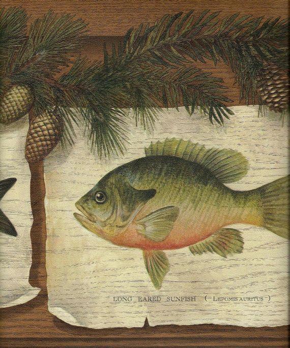 Fish and Pinecones Wallpaper Border wall decor rustic by Borders2u 570x685