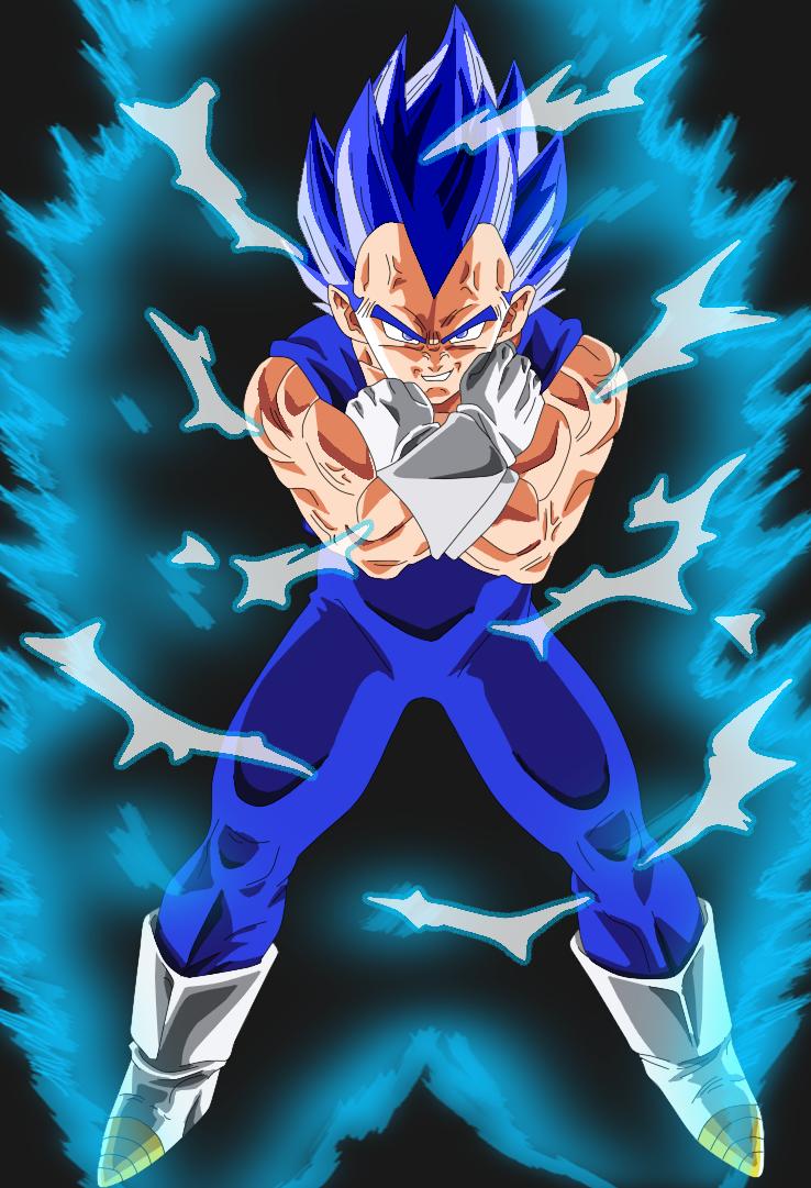 Free Download Vegeta Super Saiyan God By Leonelrest 738x1081 For