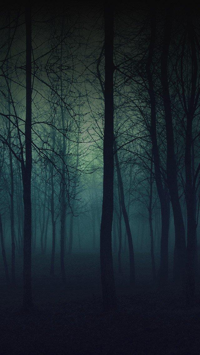 FREEIOS7 foggy forest   parallax HD iPhone iPad wallpaper 640x1136