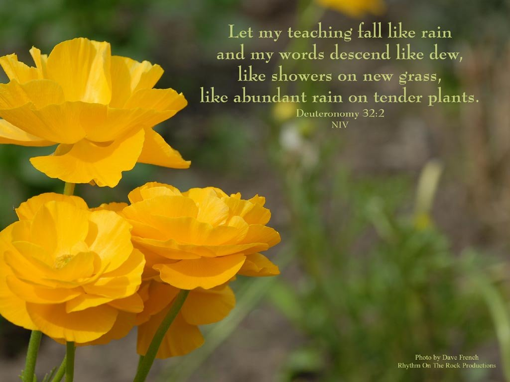 Free religious spring flowers wallpaper wallpapersafari - Christian wallpapers and screensavers free download ...