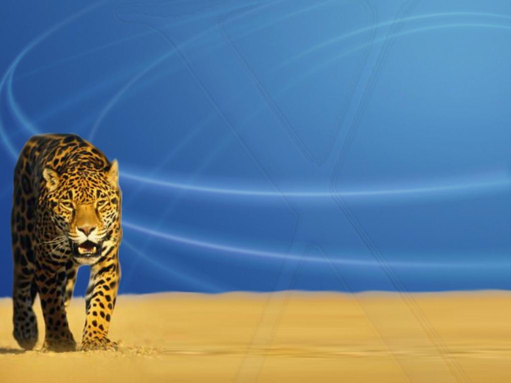 Login Screen Backgrounds Customize your Mac OS X login screen using 1024x768