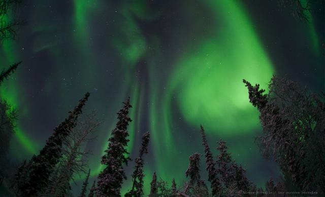 Webcam brings Northern Lights to living rooms everywhere Boing Boing 640x389