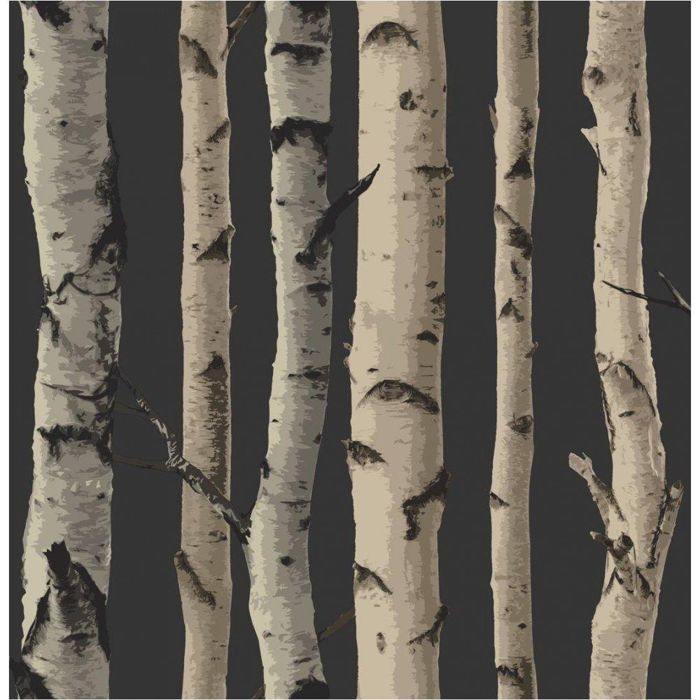 Home Wallpaper Fine Decor Fine Decor Birch Tree Wallpaper 1000x1000
