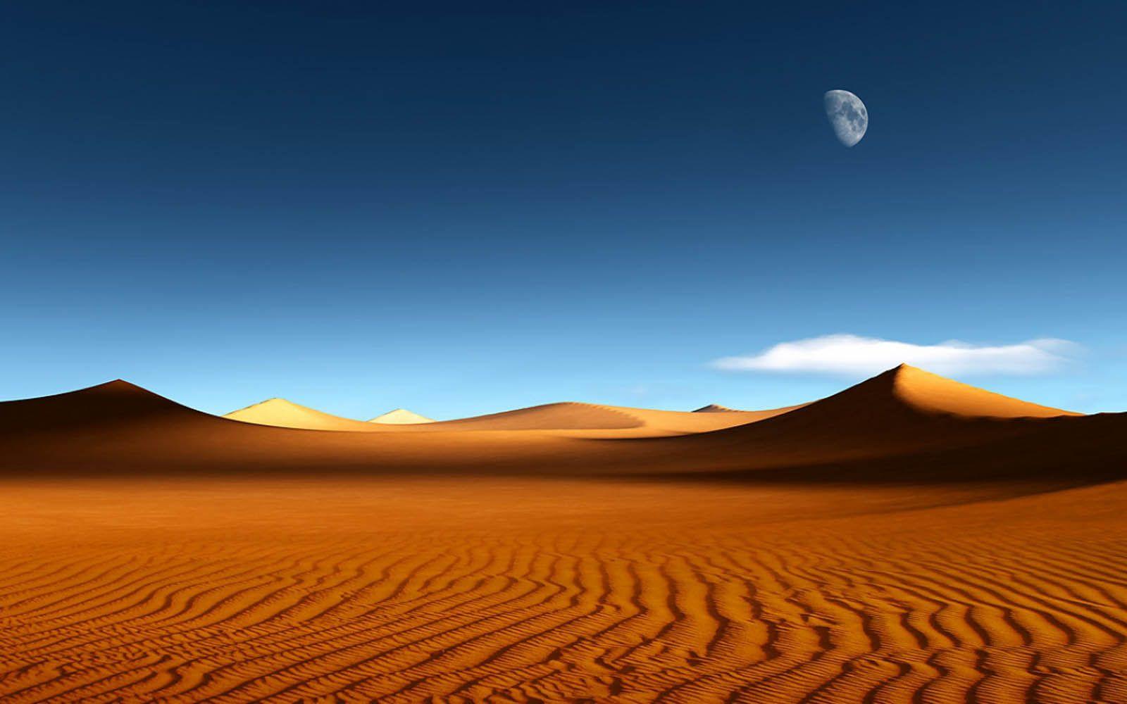 Hi Def Wallpaper Desert Deserts in 2019 Deserts Desert biome 1600x1000