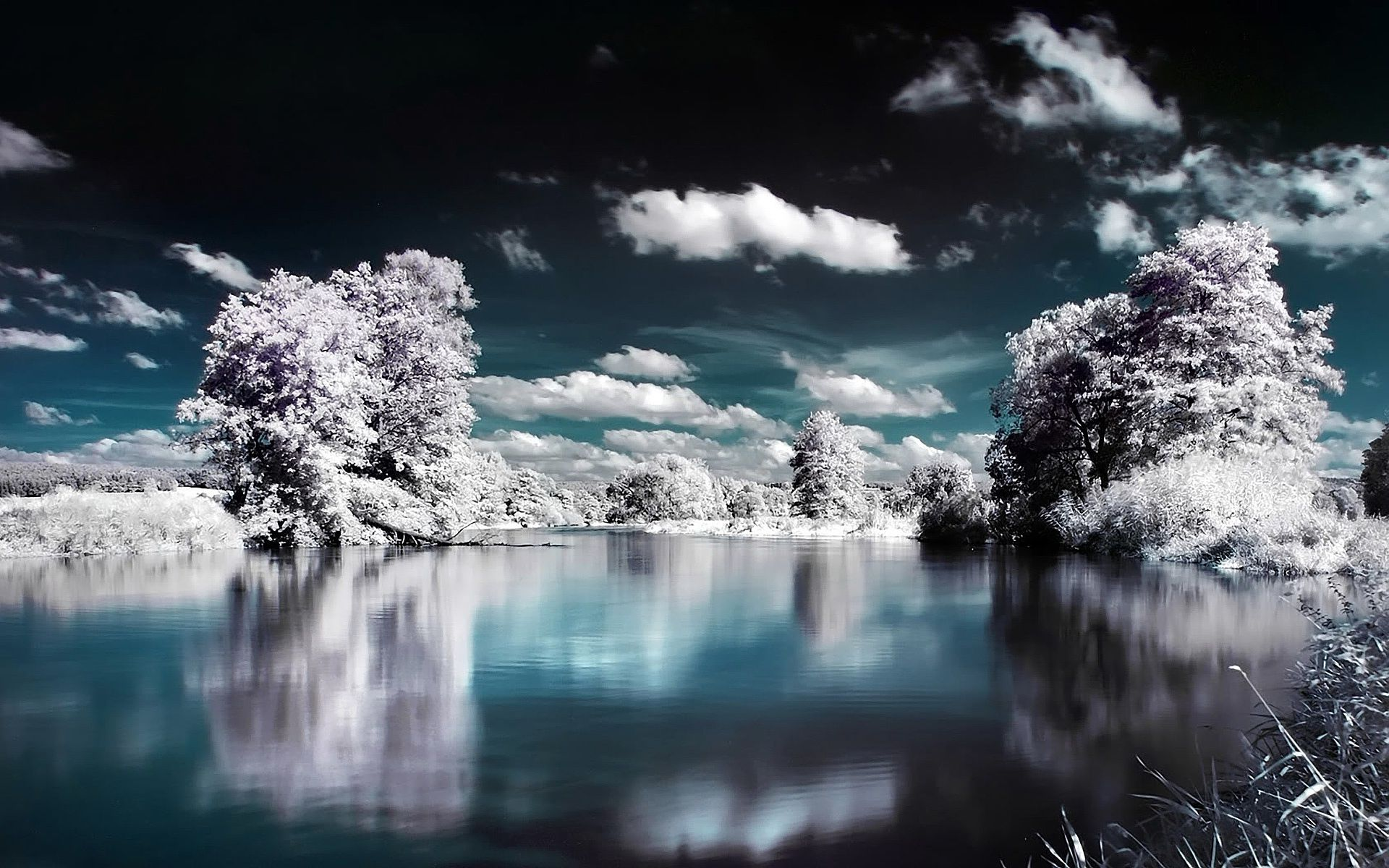 infrared landscape   Hd wallpapers Pictures Pics Photos Images 1920x1200