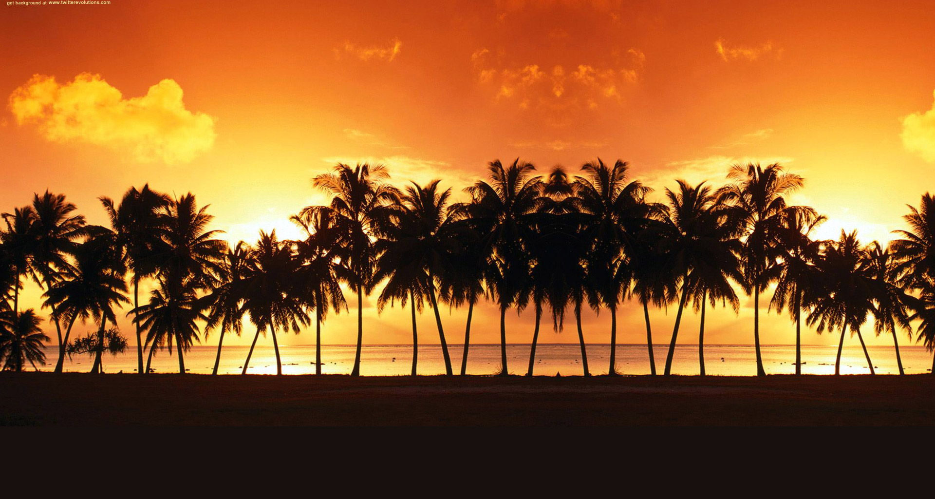 Palm trees sunset Twitter background 1920x1024