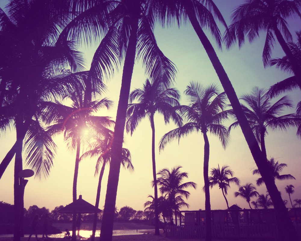 Tumblr Summer Backgrounds 1000x800