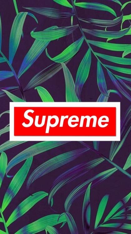 supreme iphone wallpaper Tumblr 420x750
