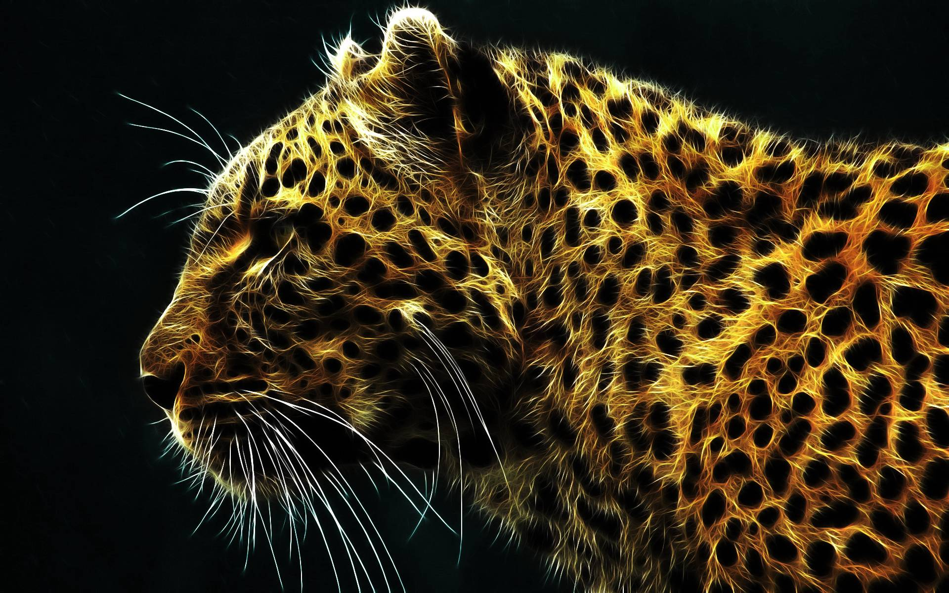 Cool Neon Animal Backgrounds Light bright leopard 1920x1200