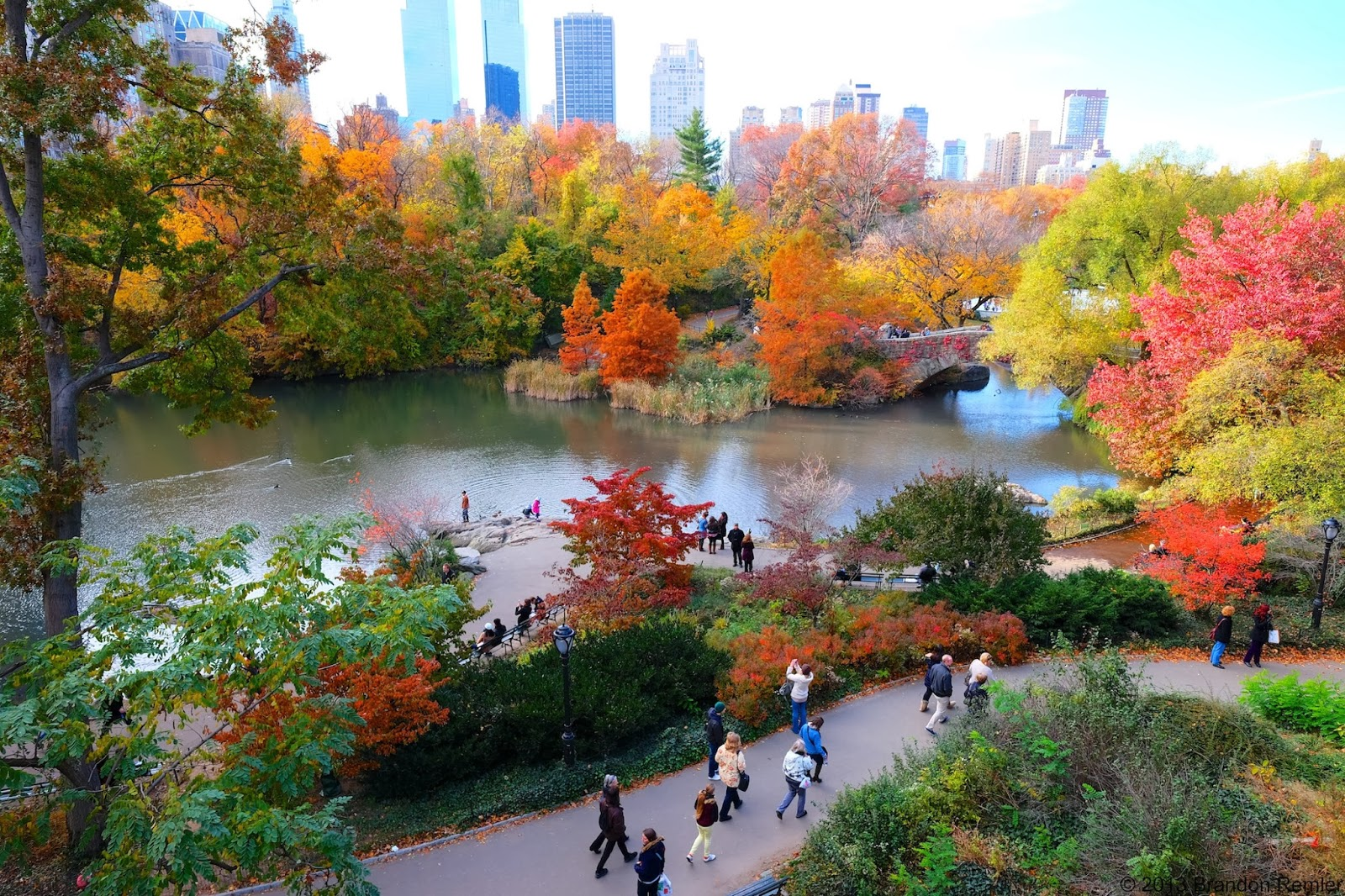 Central Park in Autumn HD Wallpaper | Background Image ...  |Autumn Central Park Screensavers