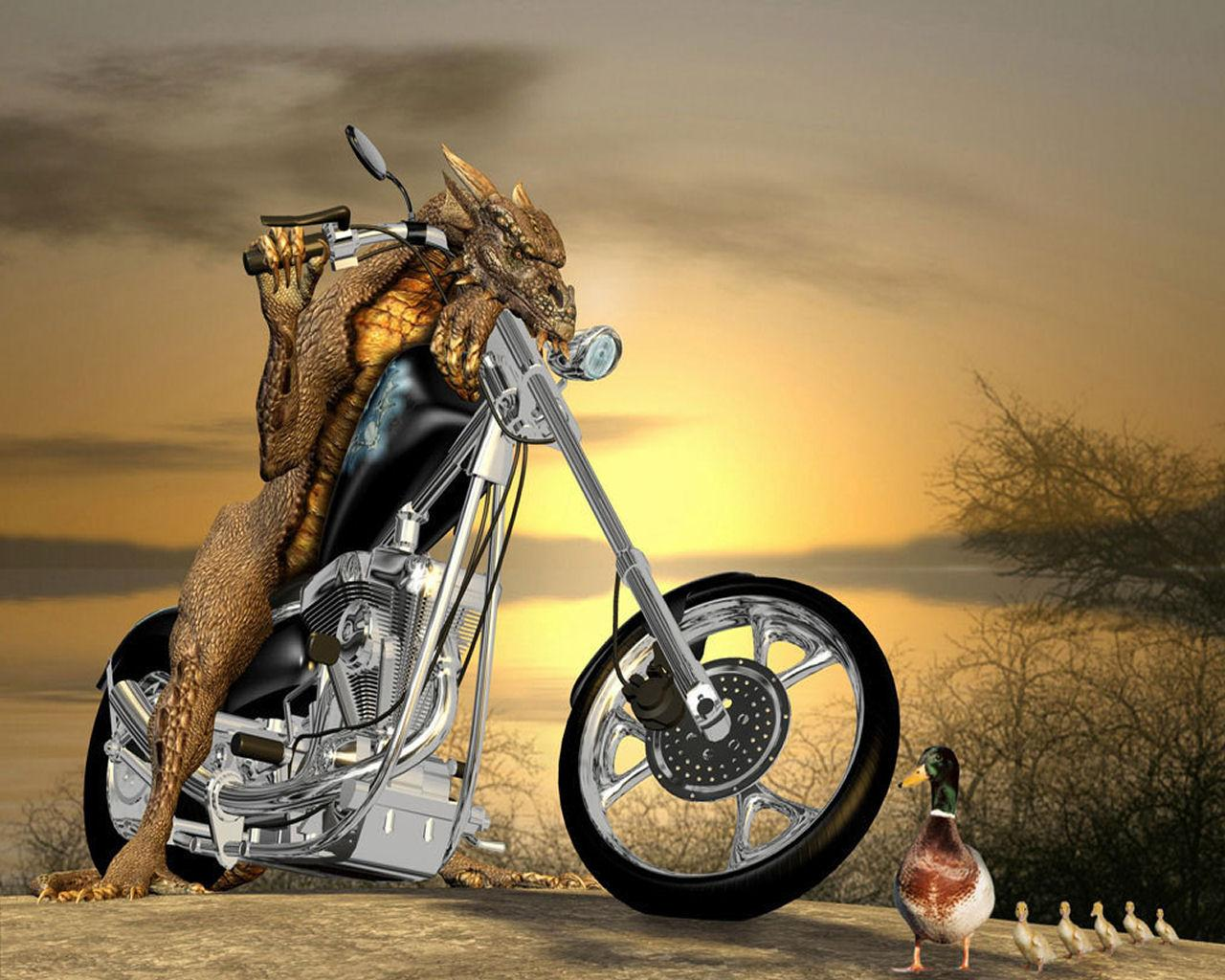 Its HD Animals Funny Wallpapers Very funny wallpapers 1280x1024