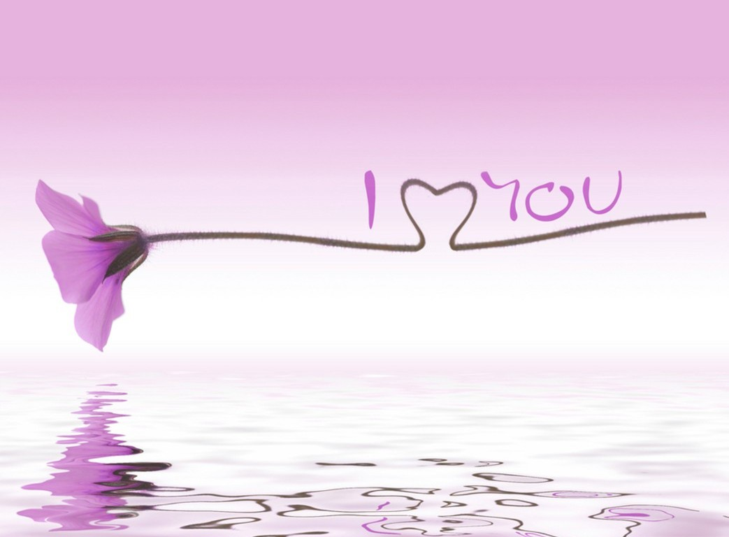 Cute Love Purple Background Wallpaper HD 14294 Wallpaper High 1043x768