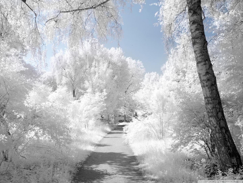 Beautiful Winter Wallpapers for Desktop wallpaper Beautiful Winter 1440x1080