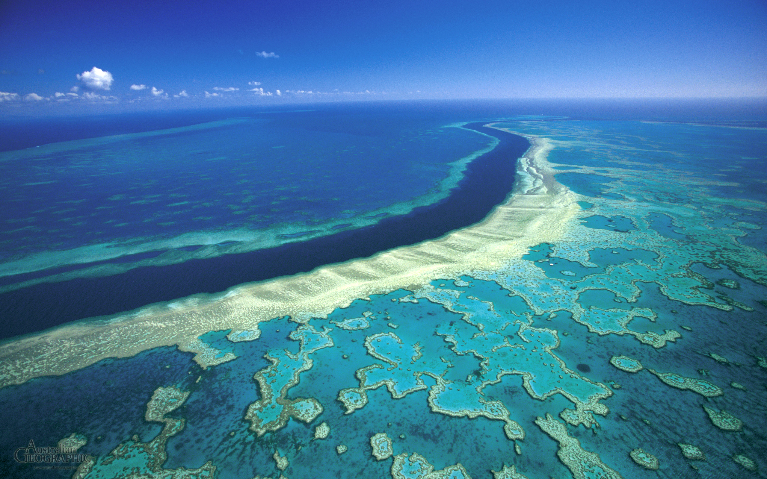 "great barrier reef The great barrier reef is an australian icon, treasured world-wide the remarkable sir david attenborough says, ""it is one of the greatest, and most splendid natural treasures that the world possesses."