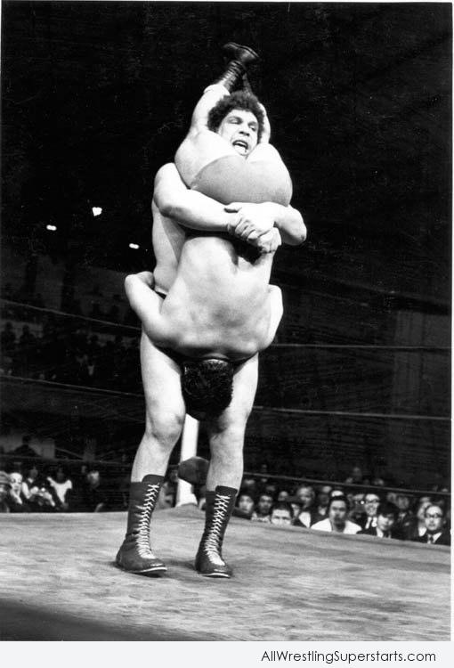 Andre The Giant   WWE Superstars WWE Wallpapers WWE PPVs 510x750