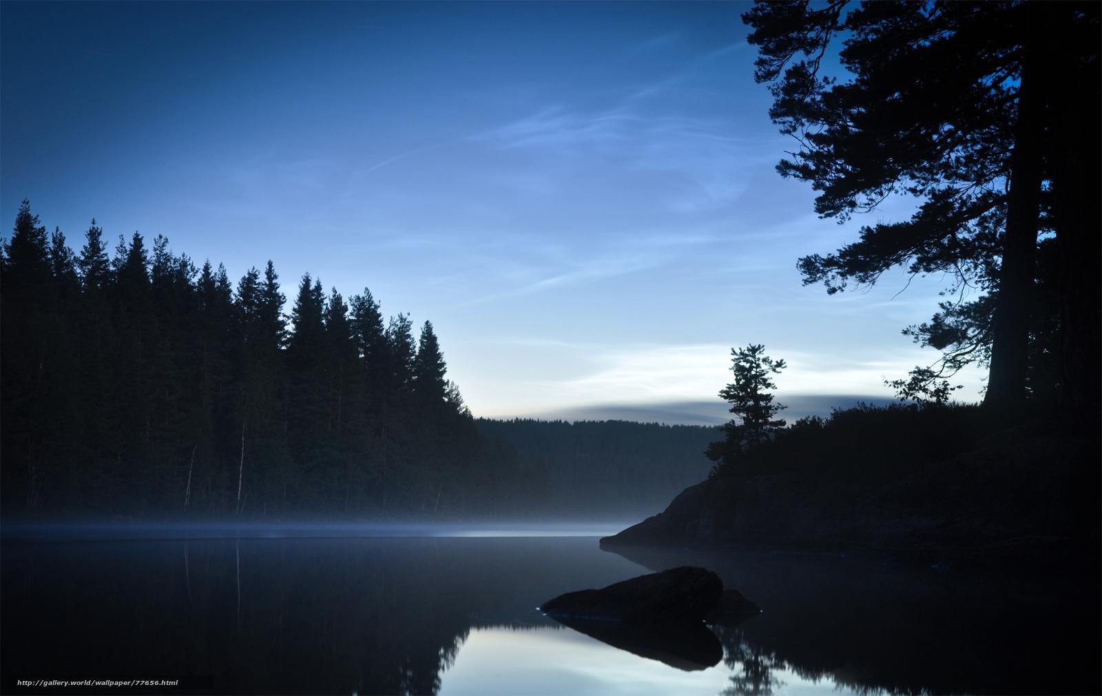 Download wallpaper Lake Trees forest desktop wallpaper in the 1600x1011