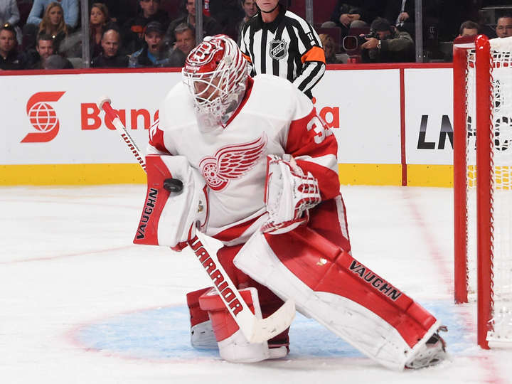 Jimmy Howard 2014 2015 Jimmy Howard 2014 2015 720x540