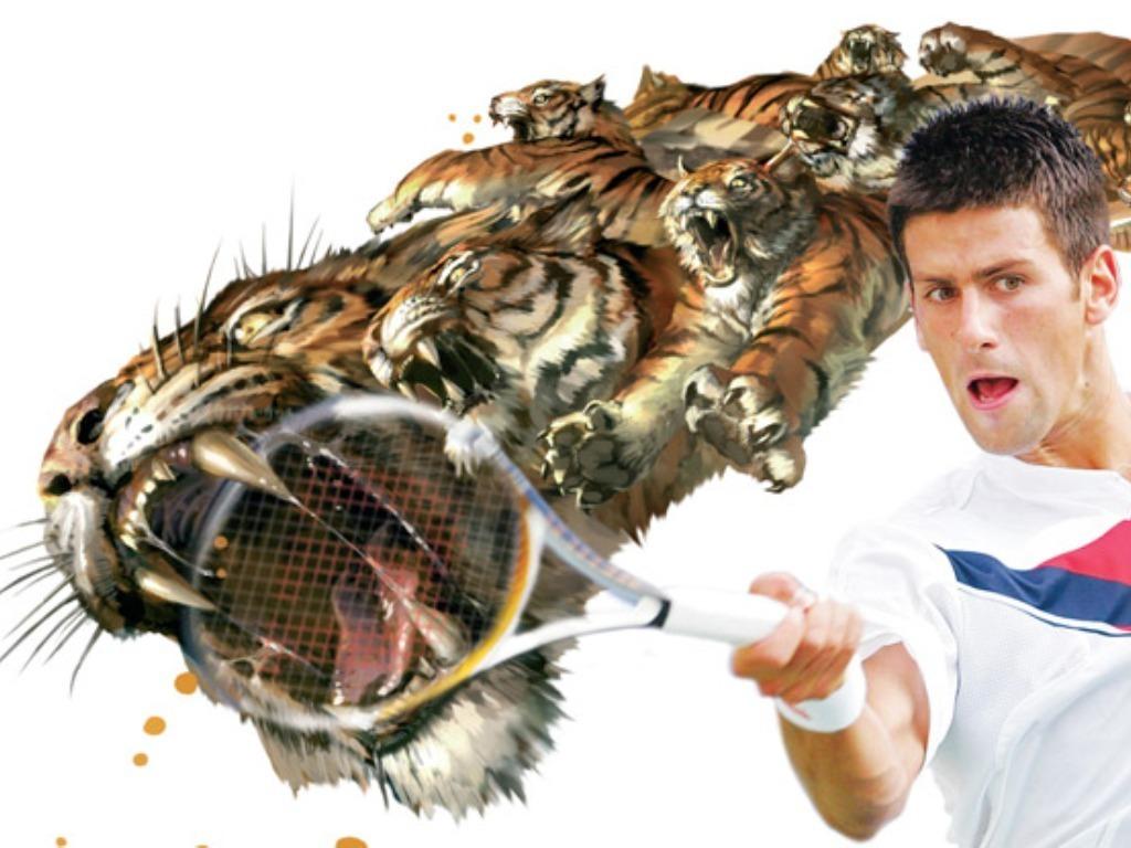 Novak Djokovic Wallpaper 1024x768