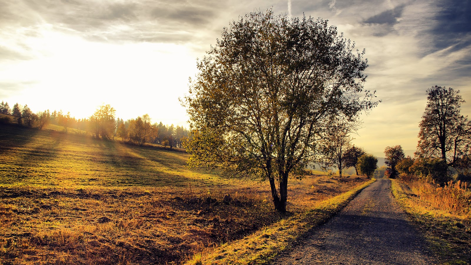 The Countryside Photography Photo Blog 1600x900