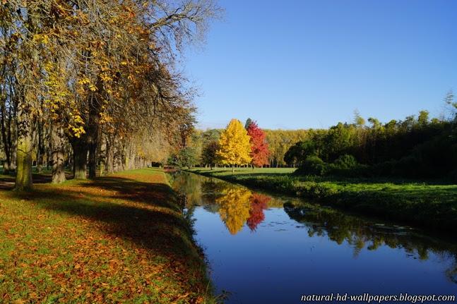 Nature beautiful HD wallpapers Desktop Wallpapers download 647x431