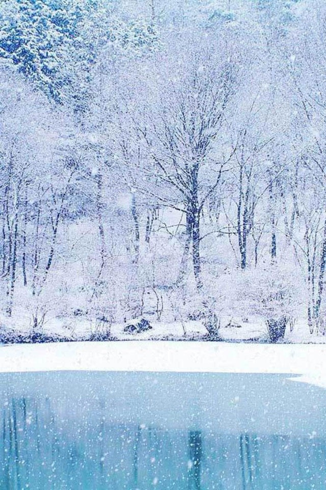 Dream Winter Scenery Iphone 4 Wallpapers 640x960 Hd Iphone 640x960