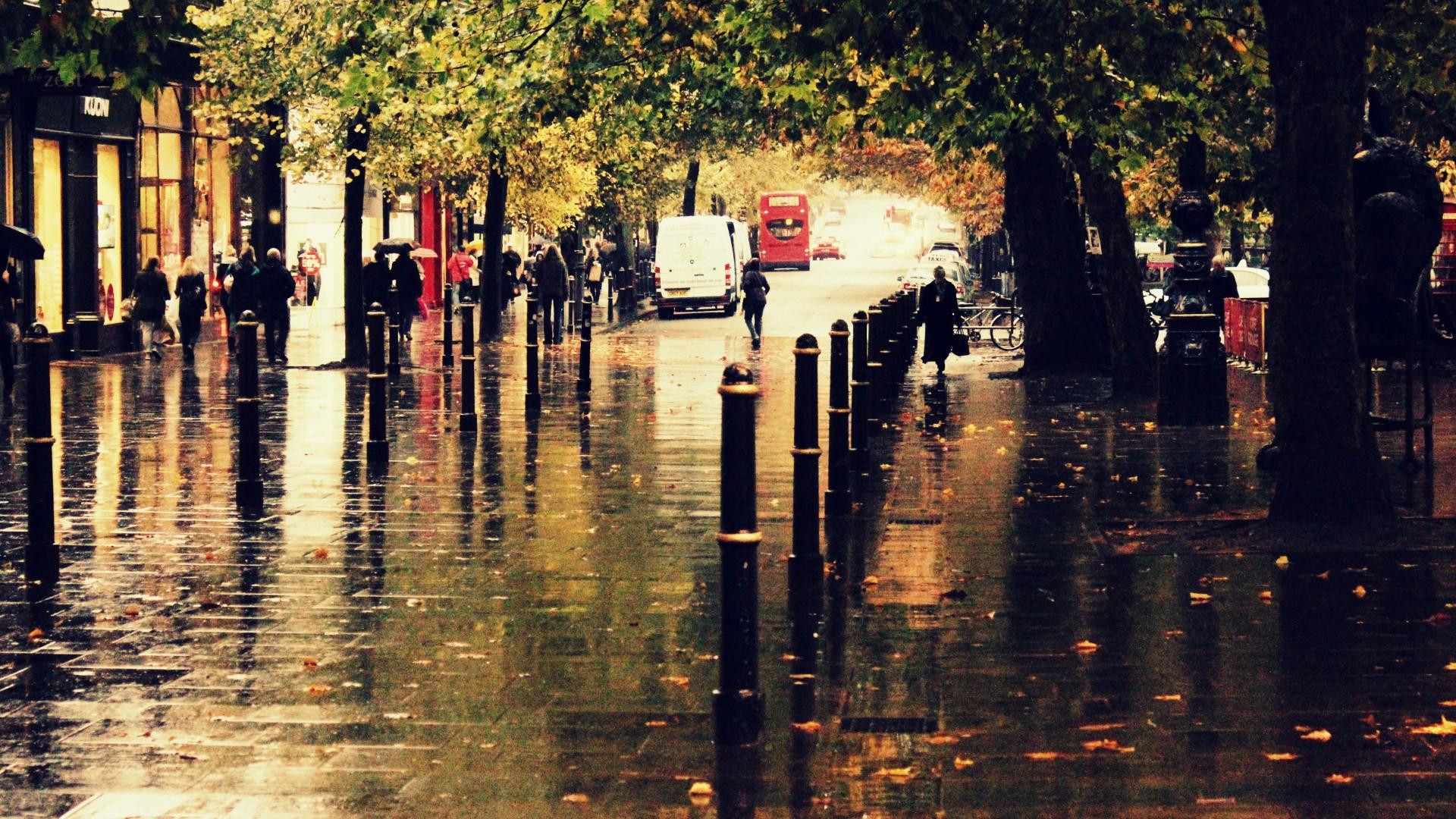Rainy Fall Wallpaper Wallpapersafari