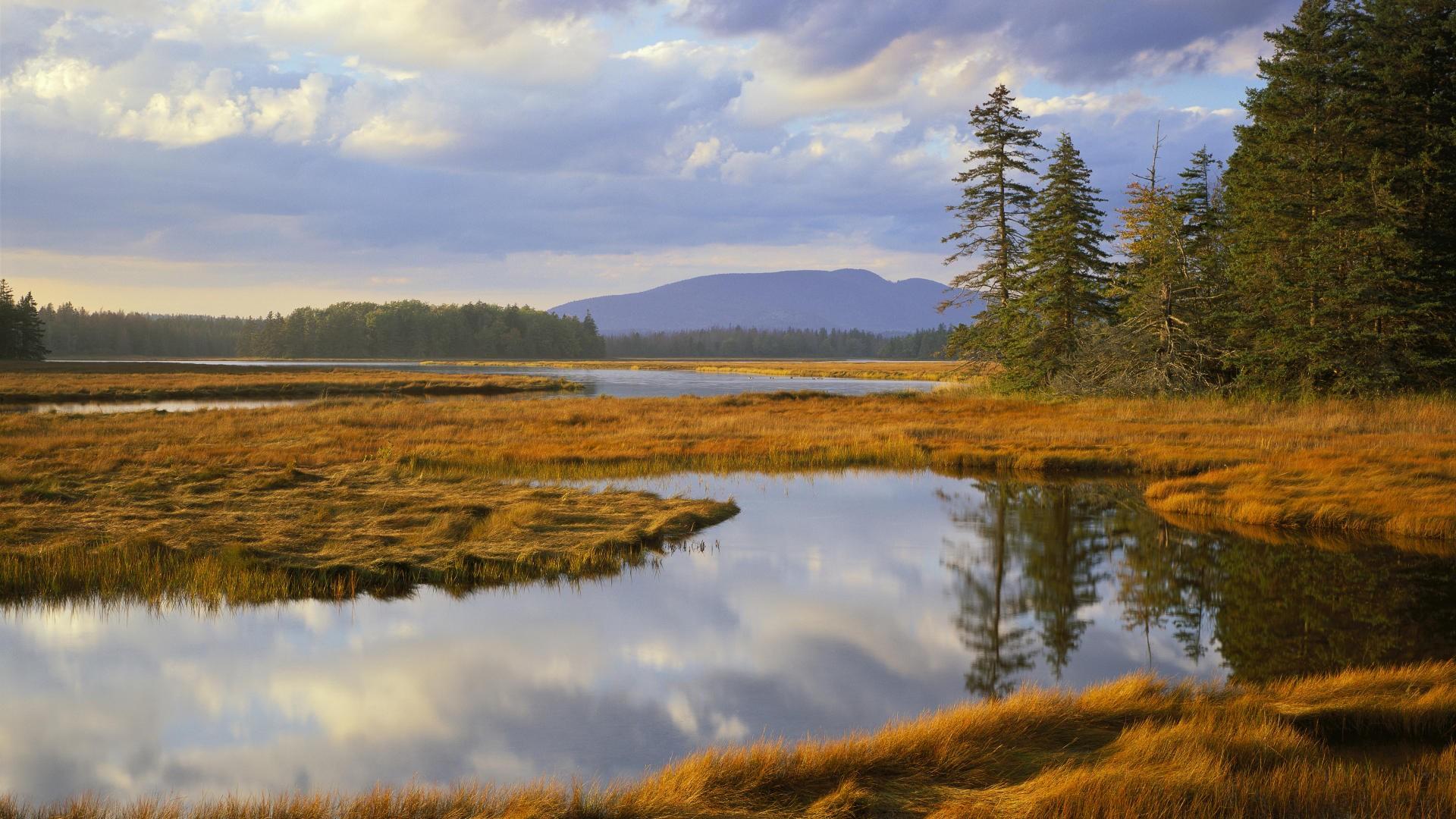Maine Scenery Wallpaper