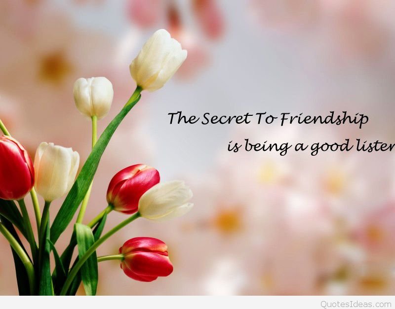 Best friendship wallpaper with quote 800x627