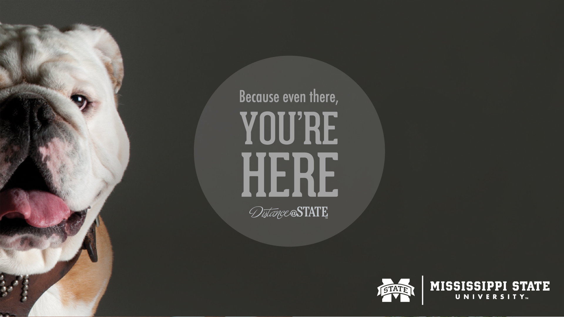 for Distance Education Wallpapers   Mississippi State University 1920x1080