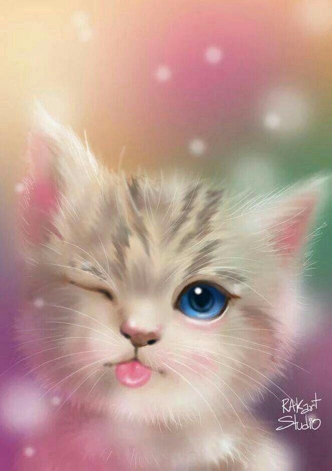 Pin by Paola Gianella on Fondos de pantalla Cute animals Cat 663x940
