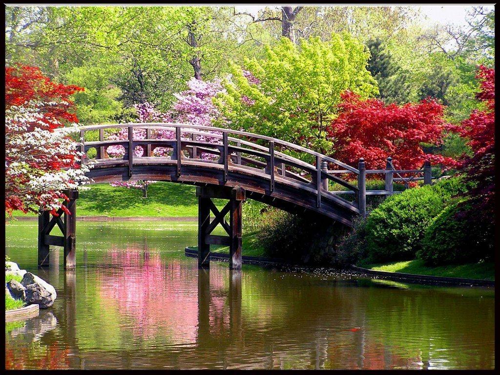 spring4 300x225 Beautiful Spring Season Wallpaper 1024x768