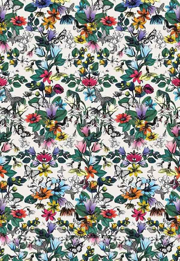 buy wallpaper Osborne and Little TULIPAN Pasha online shop Germany 600x871