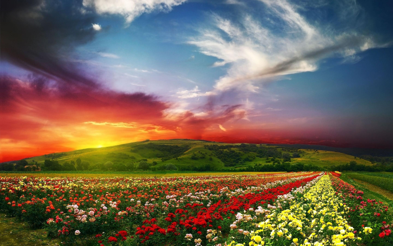 Free Download Spring Landscape Desktop Wallpaper Funmozar Spring Landscape 2880x1800 For Your Desktop Mobile Tablet Explore 44 Desktop Wallpaper Spring Landscapes Spring Scenery Wallpaper