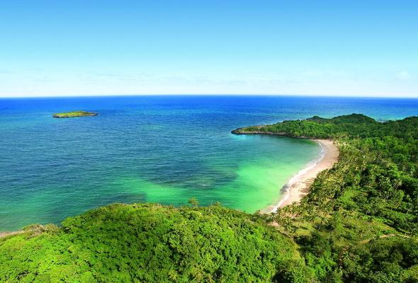 Wallpaper Dominican Republic ocean island beach tropics plam 590x400