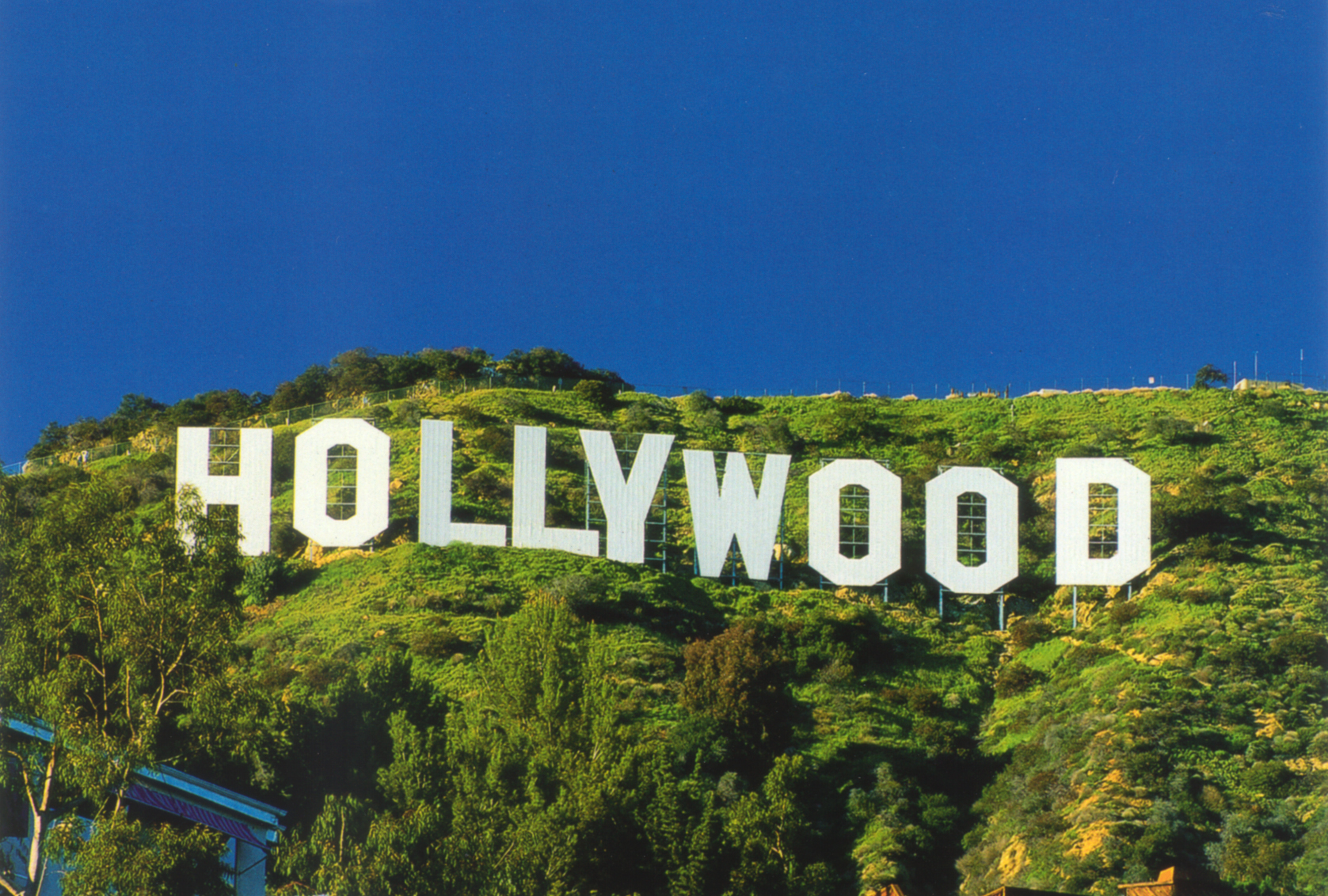 Masai Media hollywood sign wallpaper 1677x1132