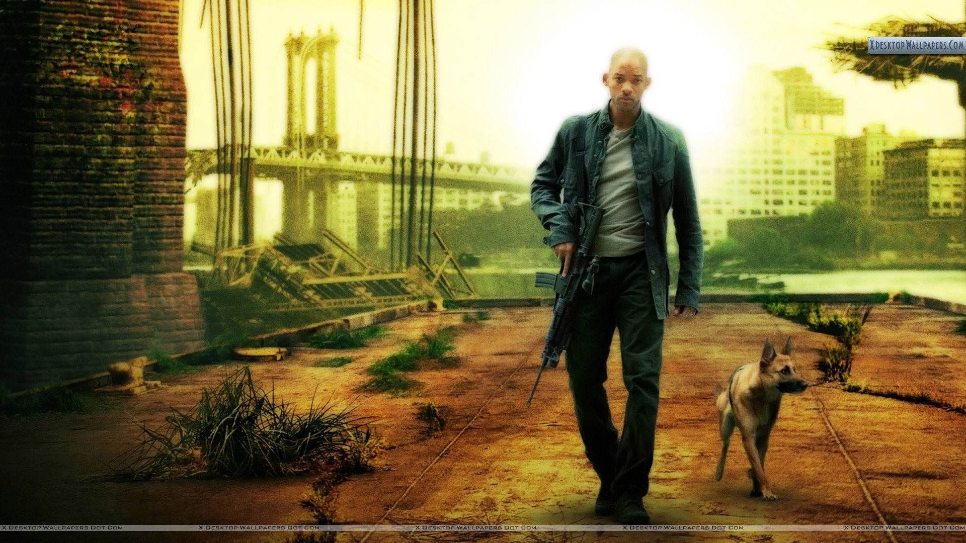 Will Smith With Dog In I Am Legend 1920x1080