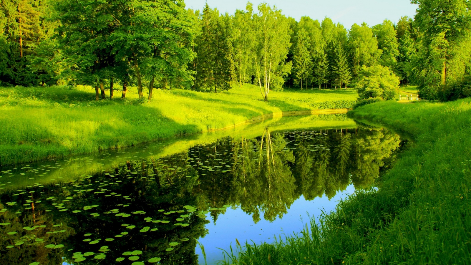 Nature Trees River Reflection Wallpaper 1600x900