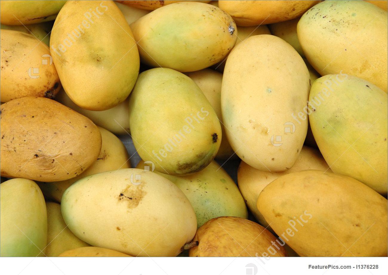 Mango Background 1300x924