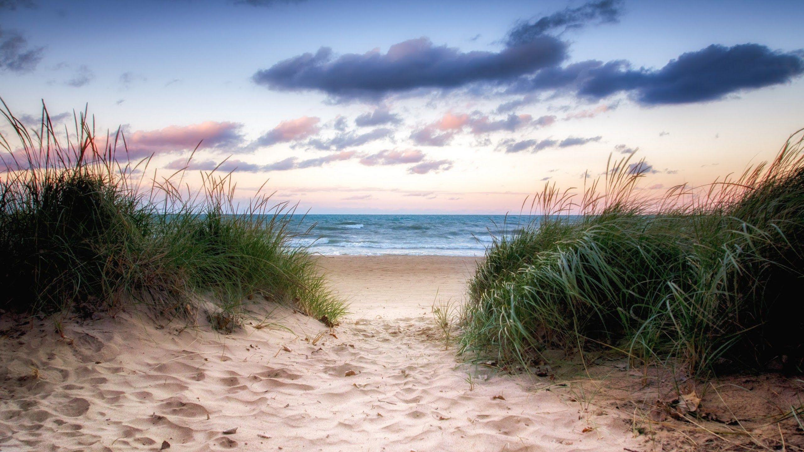 screensaver beach scream Beach wallpaper Wallpaper 2560x1440