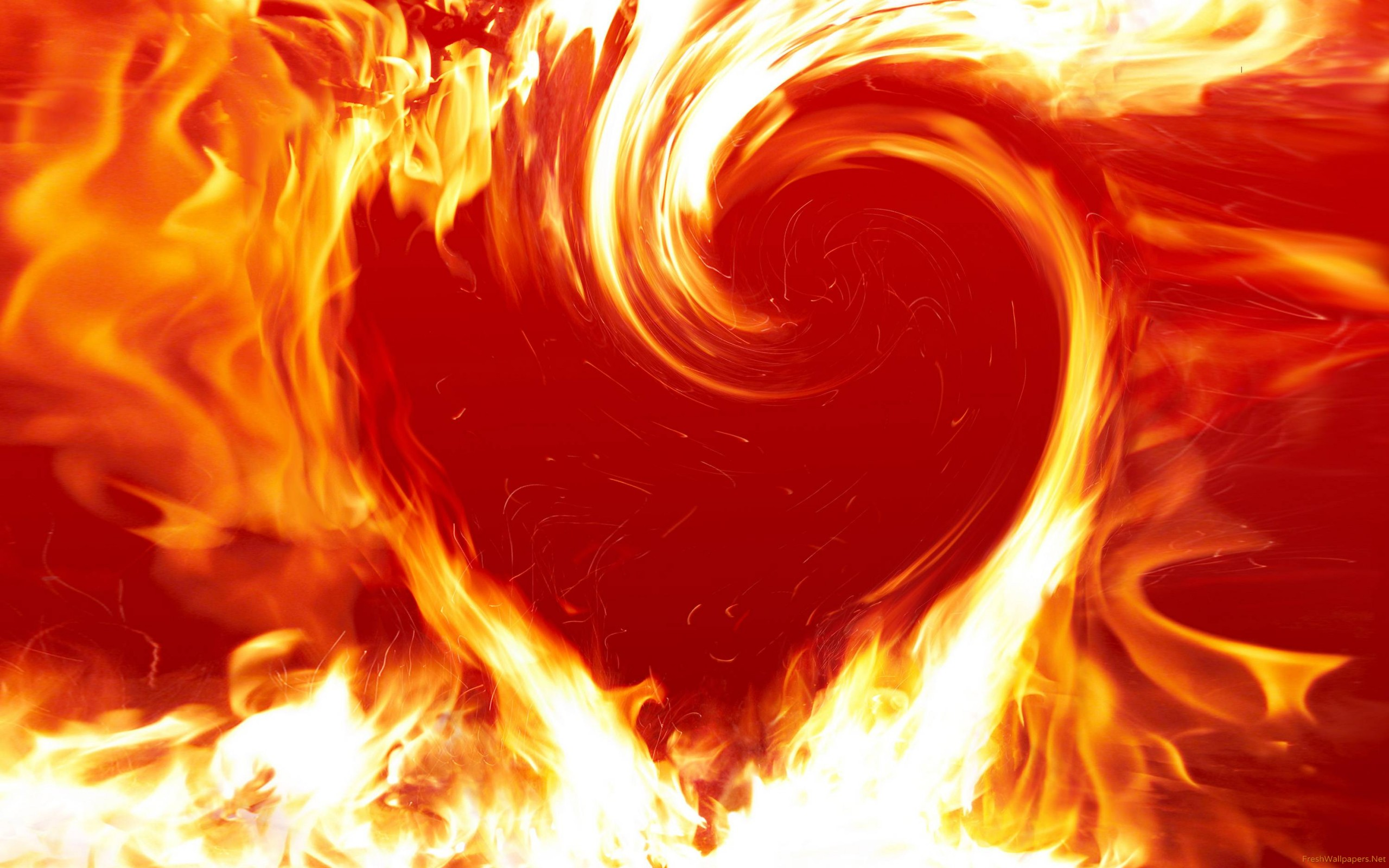Love fire wallpapers Freshwallpapers 2560x1600