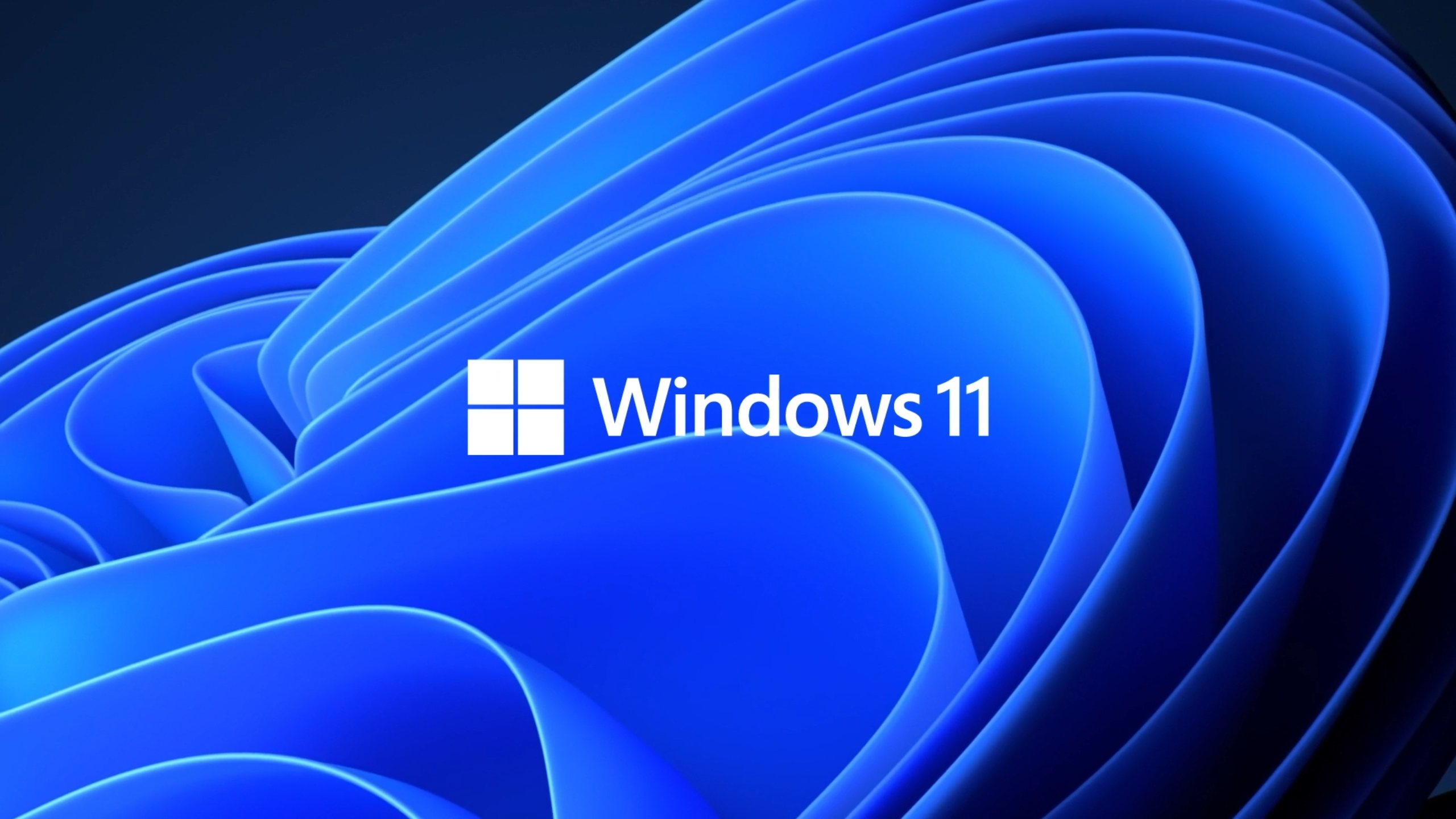 Everything You Need to Know About Windows 11 2560x1440