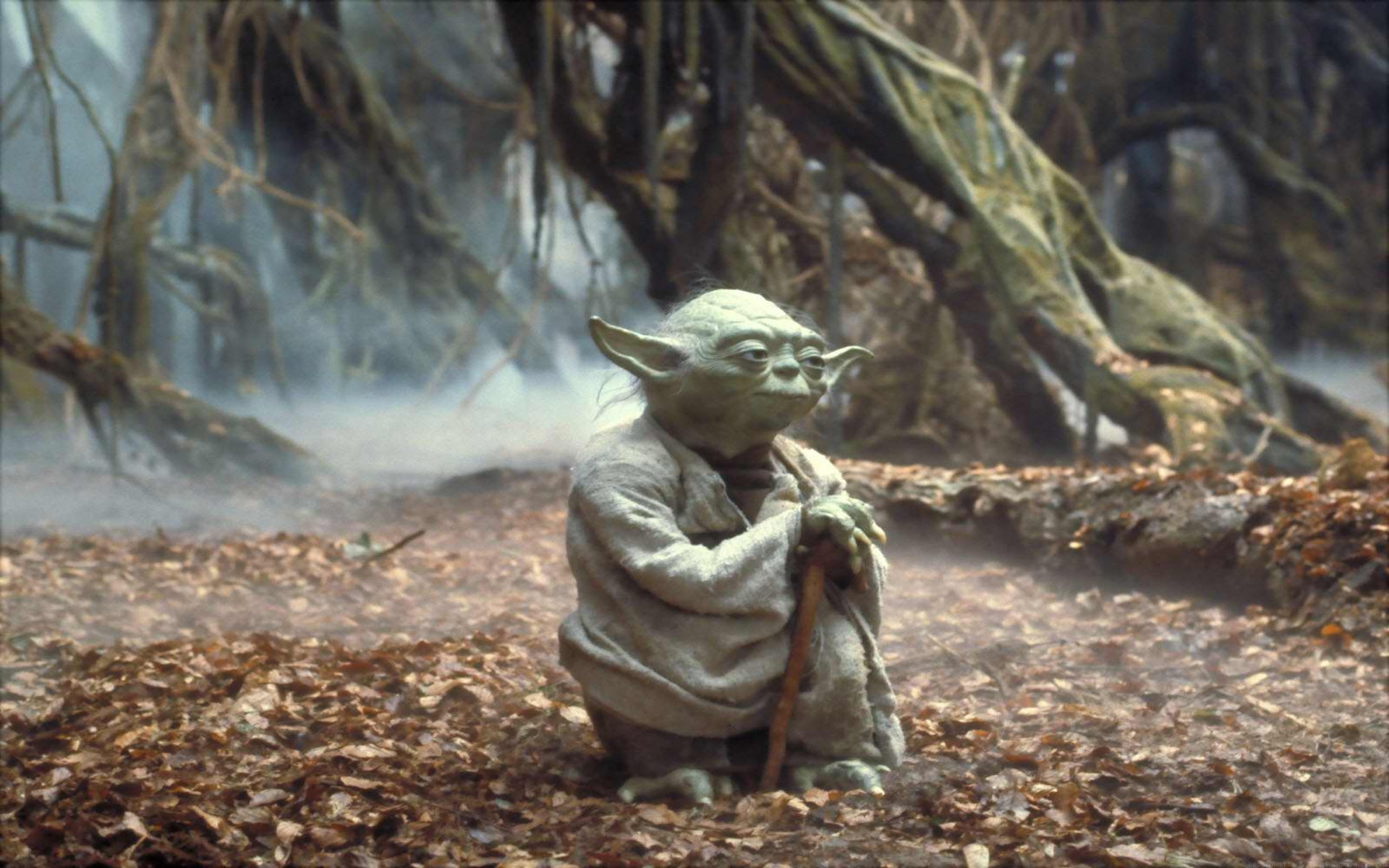 Free Download Yoda Wallpaper Hd Viewing Gallery 1920x1200 For Your Desktop Mobile Tablet Explore 76 Yoda Wallpaper Star Wars Yoda Wallpaper Jedi Master Yoda Wallpaper Hd Yoda Wallpapers For Your Computer