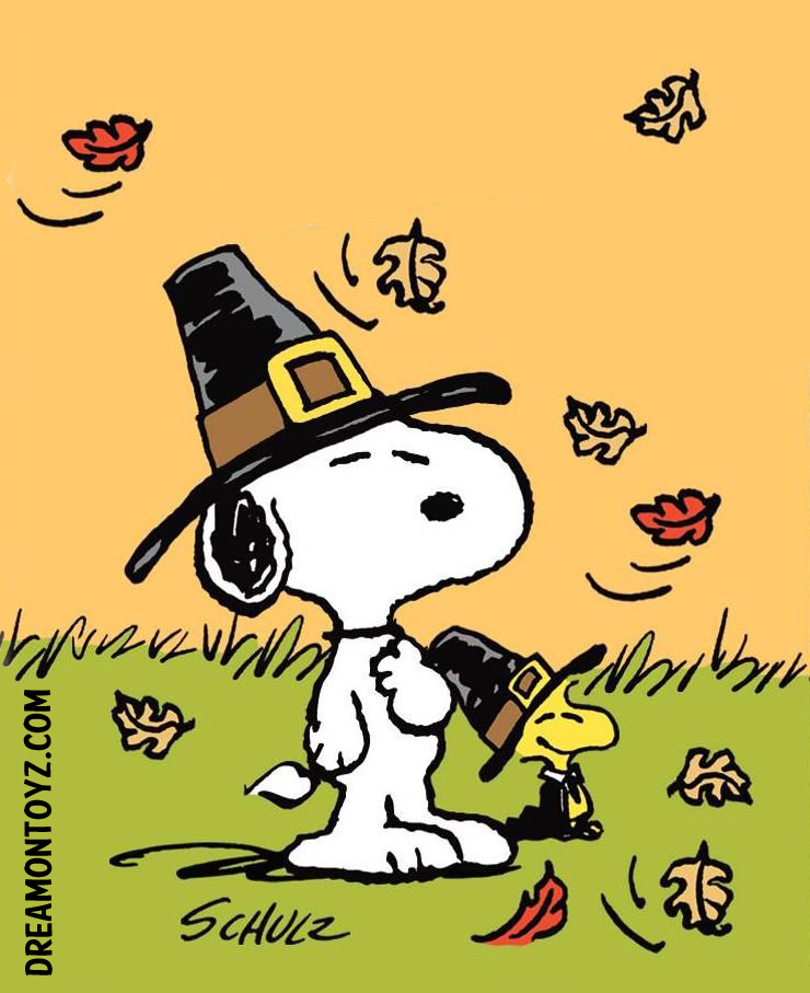 Photographs Peanuts Snoopy and Woodstock Pilgrims for Thanksgiving 740x907