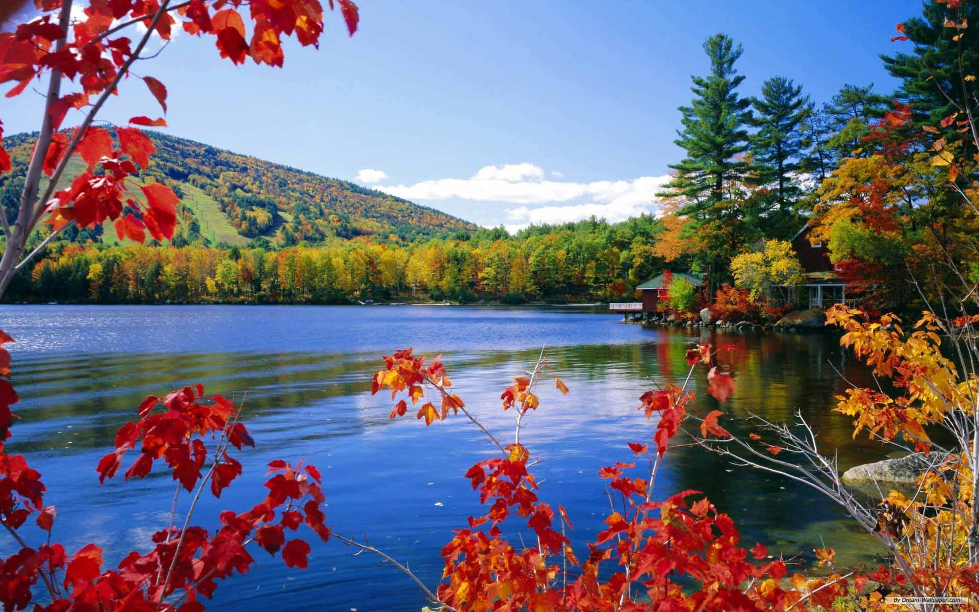 Fall colors on lake, Trees changing color in the fall around a small ...