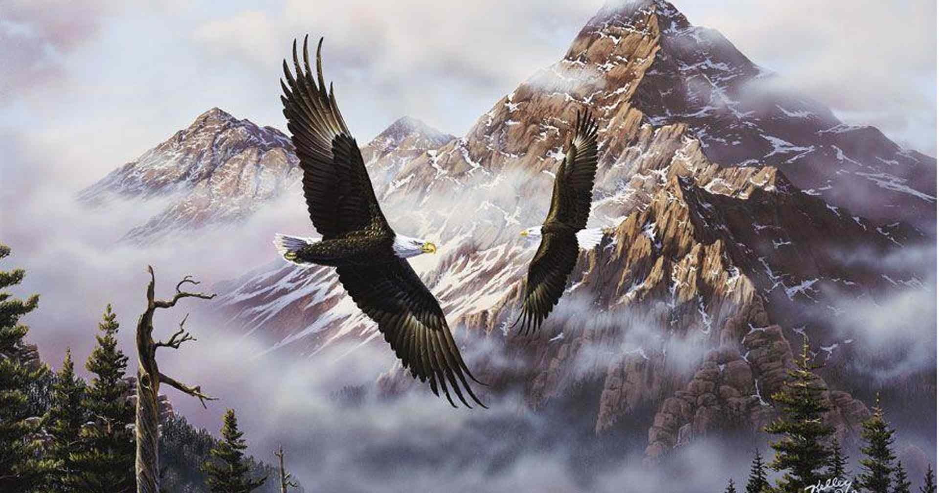 Patriotic eagle wallpapers free wallpapersafari for Eagle wall mural